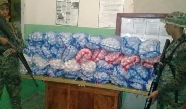 Incautan 100 sacos de ajo de contrabando en Independencia