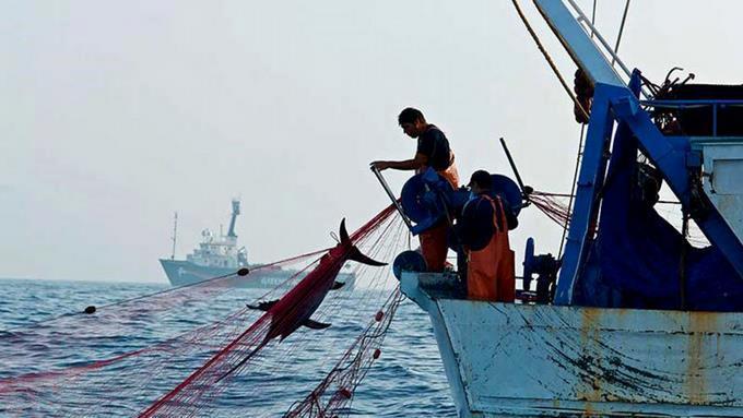 Detienen a 124 pescadores dominicanos tras tiroteo en el Caribe