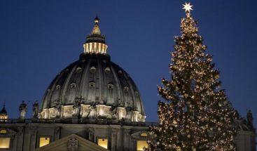 El tradicional árbol de Navidad del Vaticano llegó a Plaza de San Pedro