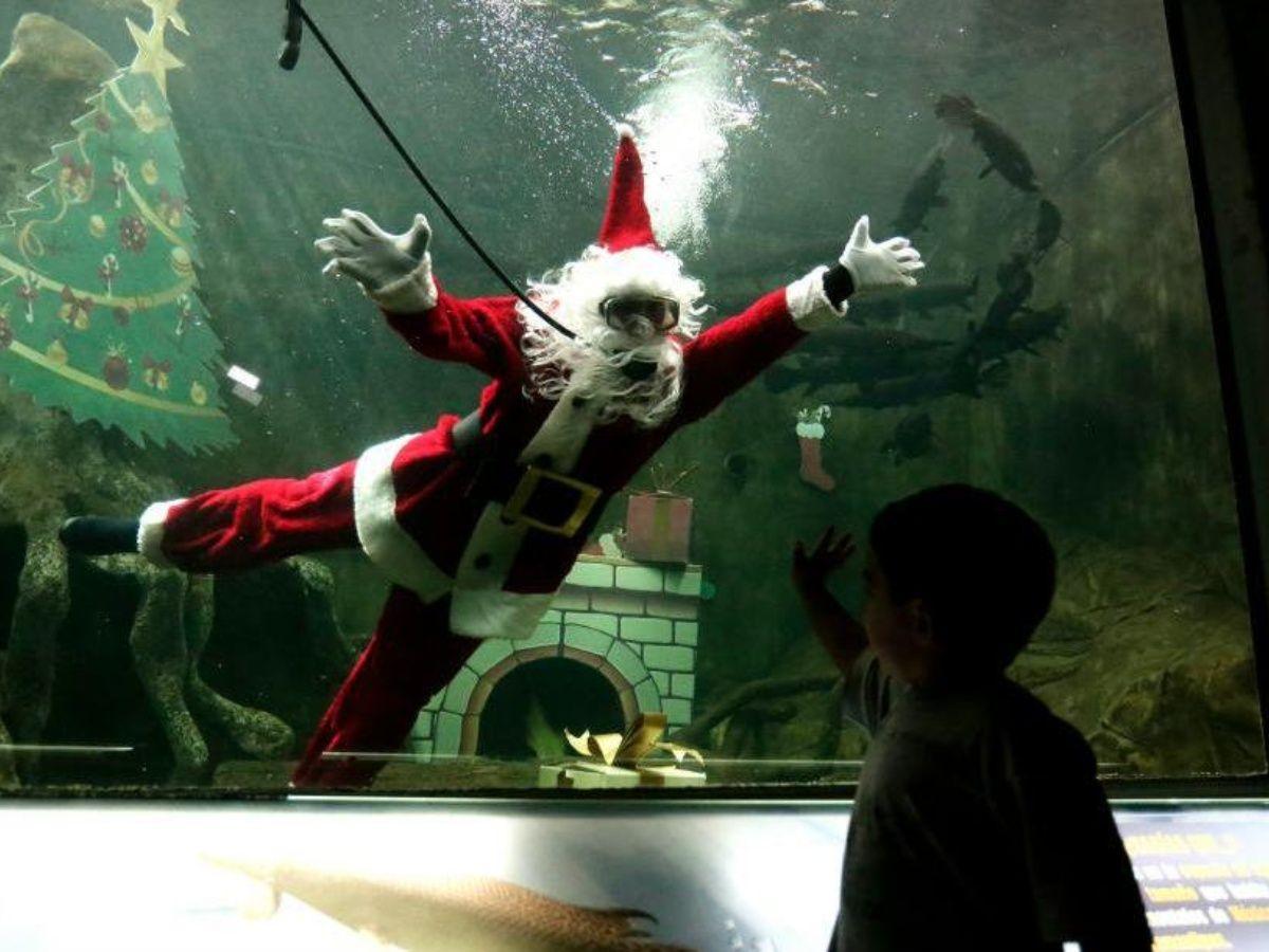 Santa Claus bucea y sorprende a visitantes de zoológico en México