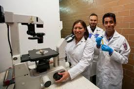 Estudian los genes de la amibiasis para combatir la enfermedad