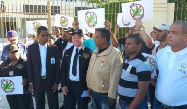 Hogar Crea rechaza lalegalizaciónde la marihuana con fines medicinales