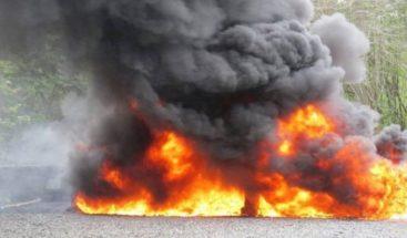 Incineran drogas incautadas en Barahona y otras zonas del país