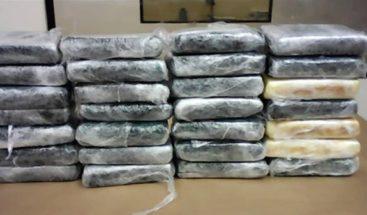 DNCD incauta 28 paquetes de cocaína enel Puerto Multimodal Caucedo