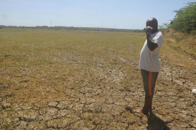 Solicitan a Medina declarar en emergencia provincias afectadas por sequía