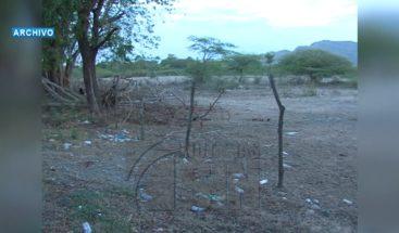 Dirigente agropecuario del PRM afirma sequía en el país son más cuantiosas