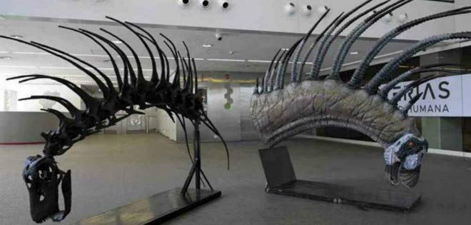 Identifican el fósil de un nuevo mamífero gigante, el