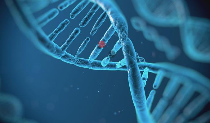 Descubren modificación genética antes de nacer que evita enfermedades letales