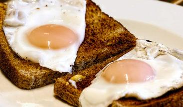 'El huevo de la discordia': ¿Es beneficoso o dañino comerlos?