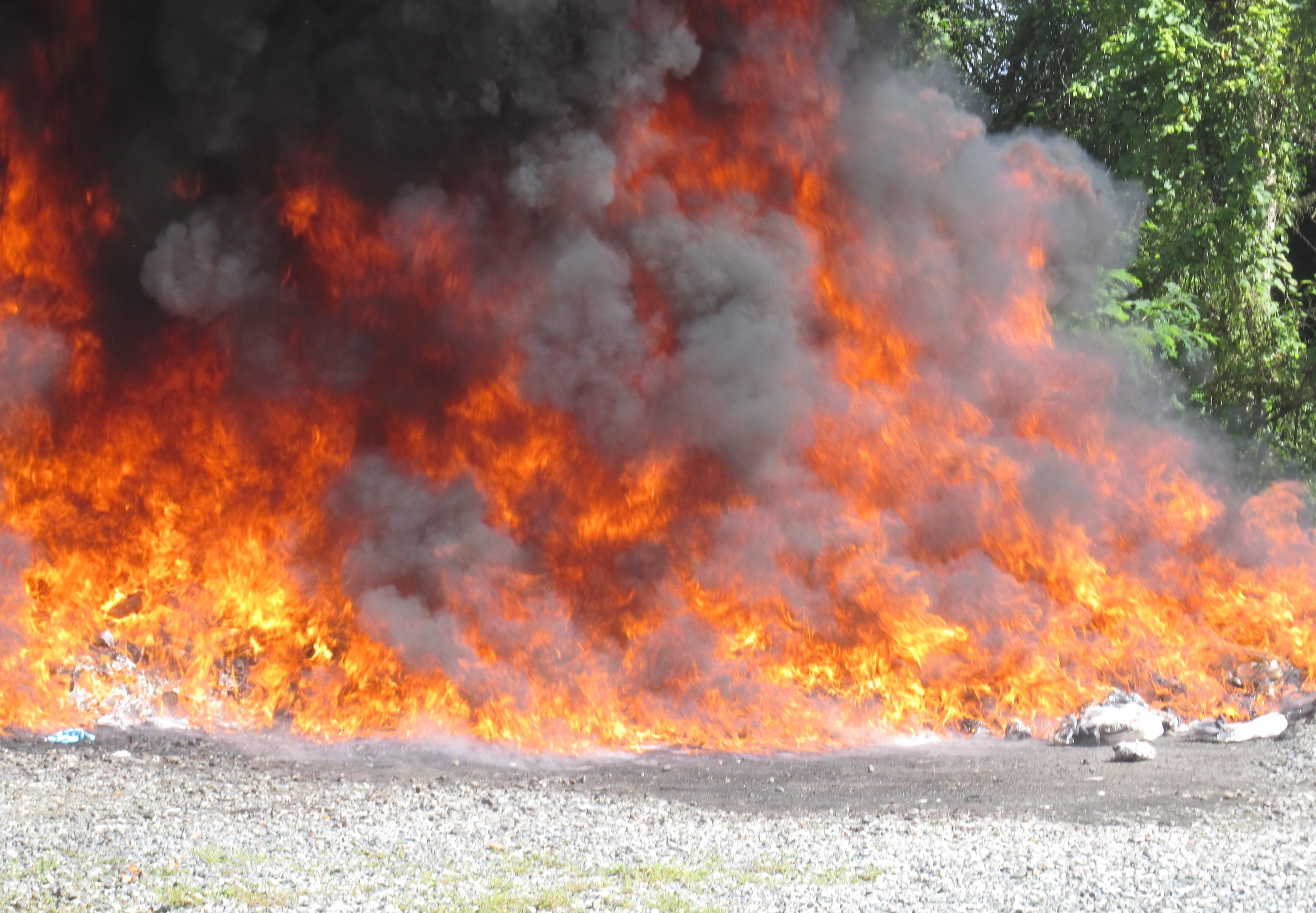Procuraduría quema 395 kilogramos de drogas incautadas en 26 provincias del país