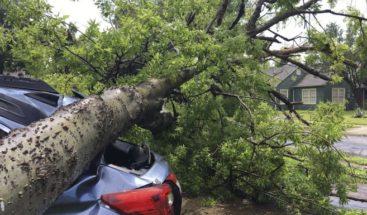 Árboles caen sobre vehículos y casas en Nicaragua por fuertes vientos