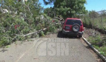 Ventarrón produce daños a viviendas y en la agricultura en El Pino de Dajabón