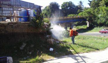 Realizan operativo de fumigación en Santiago