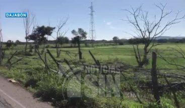 Ventarrón y lluvias derrumban arboles y postes del tendido eléctrico en Dajabón