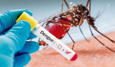 Ascienden a 28.603 los casos de personas infectadas por dengue en Honduras