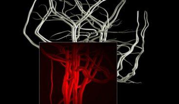 Científicos universidad alemana imprimen tejido humano 3D para astronautas