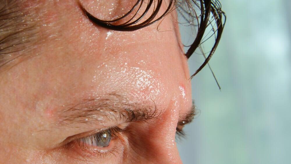 Seis efectos del calor en el organismo
