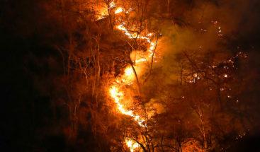 Cientos de personas se manifiestan en Bruselas por los incendios del Amazonas