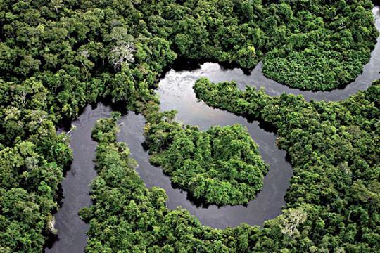 Organización indígena de Amazonía solicita sanción para Brasil y Bolivia