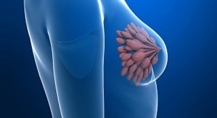 Divulgar los síntomas de cáncer es primordial para un diagnóstico oportuno