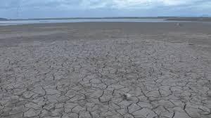 ONU advierte de que hay que cambiar la dieta para parar el cambio climático