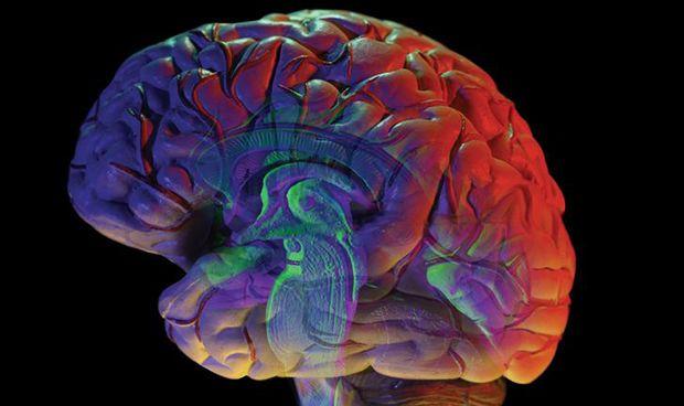 Científicos logran identificar genes asociados al trastorno bipolar