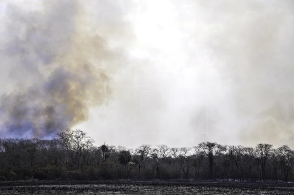 El viento amenaza con propagar los incendios de Brasil y Bolivia a Paraguay