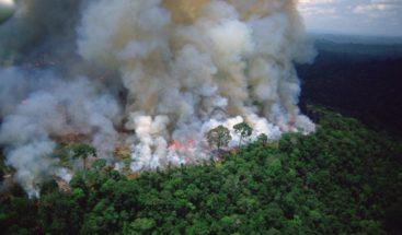Gobierno español expresa preocupación por la Amazonía y ofrece cooperación