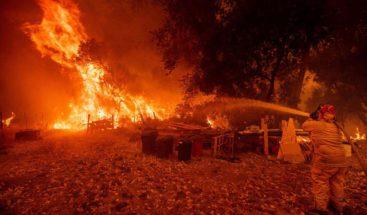 California presenta gel que ayudará a prevenir incendios forestales