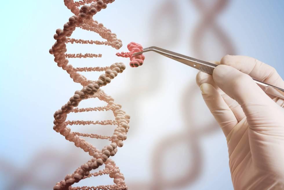 Desarrollan una nueva técnica para editar el genoma y evitar enfermedades