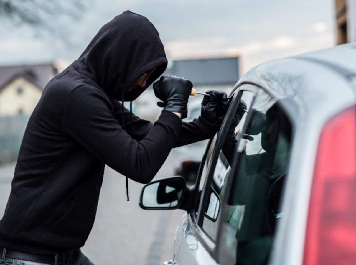 ¡A prisión! Presunto cabecilla y otros ocho implicados en red de robo de vehículos