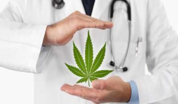 Marihuana medicinal en Tailandia: entre el rechazo y el exceso de fe