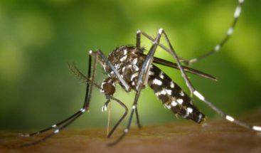 Confirman tres muertes y 36 casos de dengue en Espaillat; anuncian operativo de fumigación