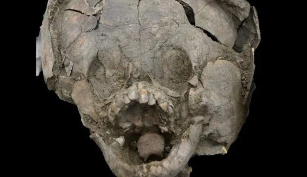 Descubren cabezas de bebés envueltas con cráneos de niños mayores