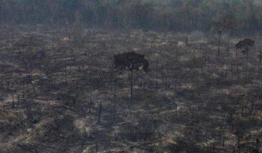 Deforestación en Amazonía brasileña subió un 80% en septiembre, según estudio