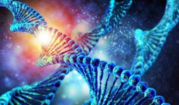 Los genes no son el único factor de riesgo de aparición del alzhéimer