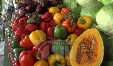 Restos de pesticidas en alimentos afectan nuestra salud