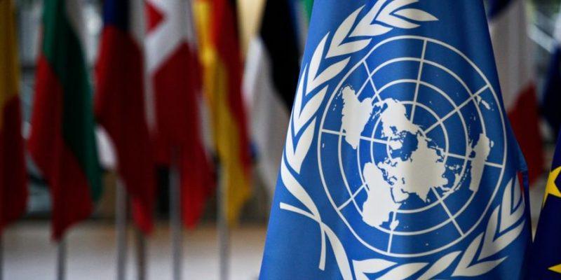 La pandemia está teniendo un impacto catastrófico en el desarrollo, dice ONU