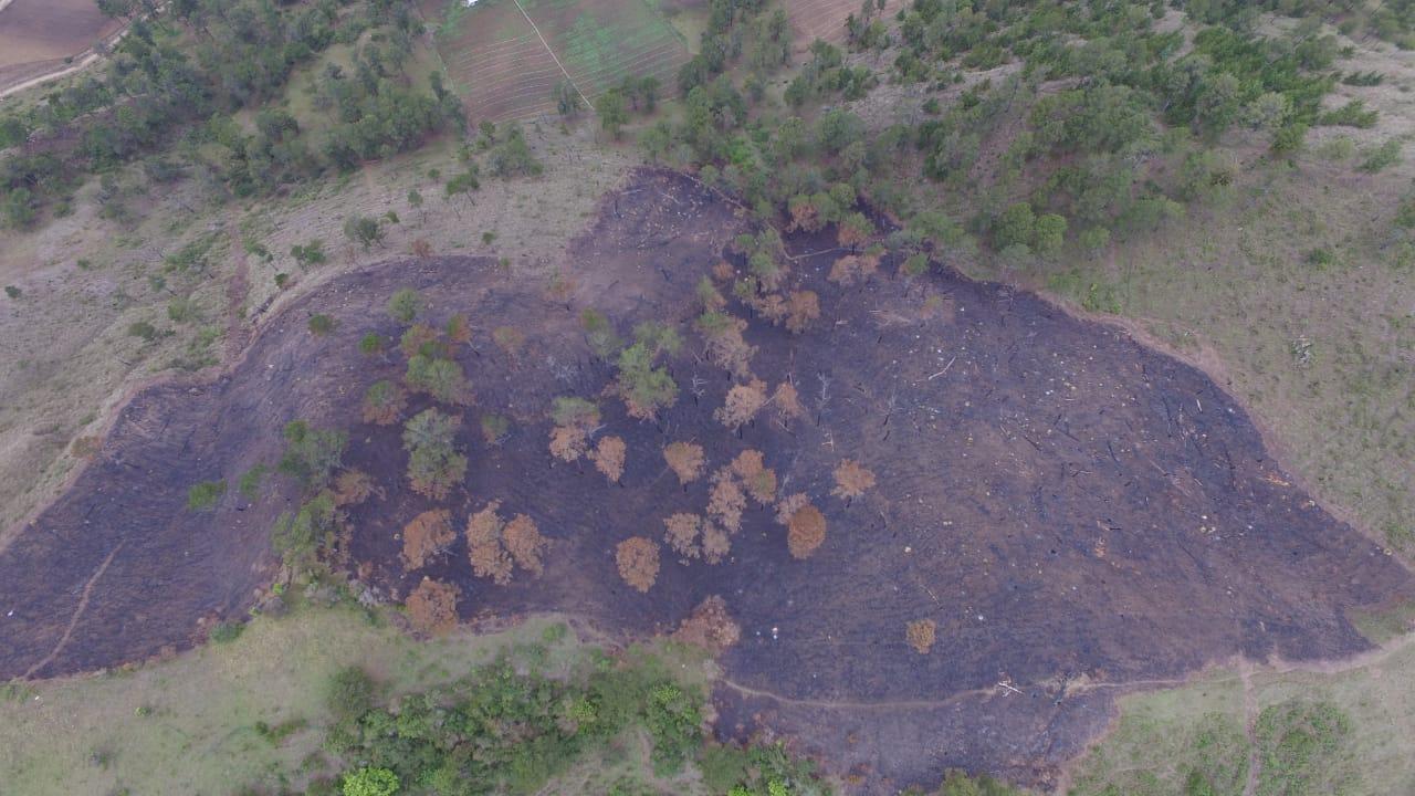 Continúan incendios forestales en diferentes zonas boscosas de Constanza