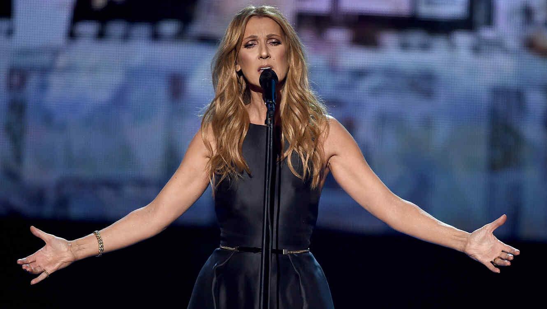 Celine Dion, Cher y Pitbull se unen a la campaña de la ONU