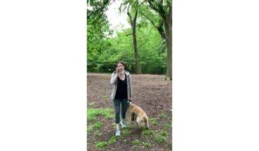 Una denuncia racista de una mujer blanca en Central Park se vuelve viral