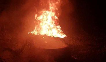 Antisociales incendian área verde en Bonao