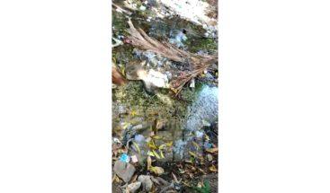 Barahona: Denuncian contaminación en el río Birán