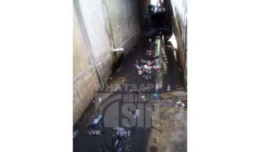 Residentes en San Rafael piden limpieza de cañada