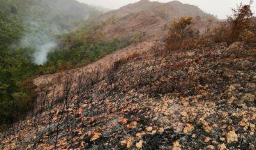 Moradores indignados ante quema y tala de bosque en Samaná