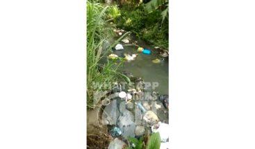 Residentes en Higüey piden saneamiento de cañada