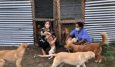 Hony Estrella se suma a favor de refugio para animales rescatados