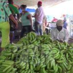 Cesfront interviene mercado La Verdura en Dajabón