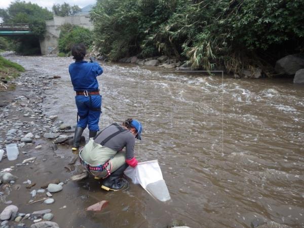 Estudio encuentra huellas del SARS-CoV-2 en ríos