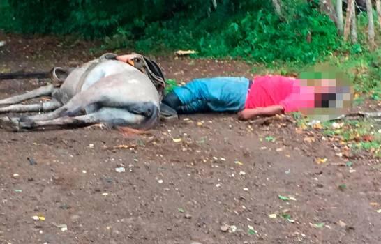 Muere hombre y su caballo por contacto con cable eléctrico derribado por Isaías en El Seibo